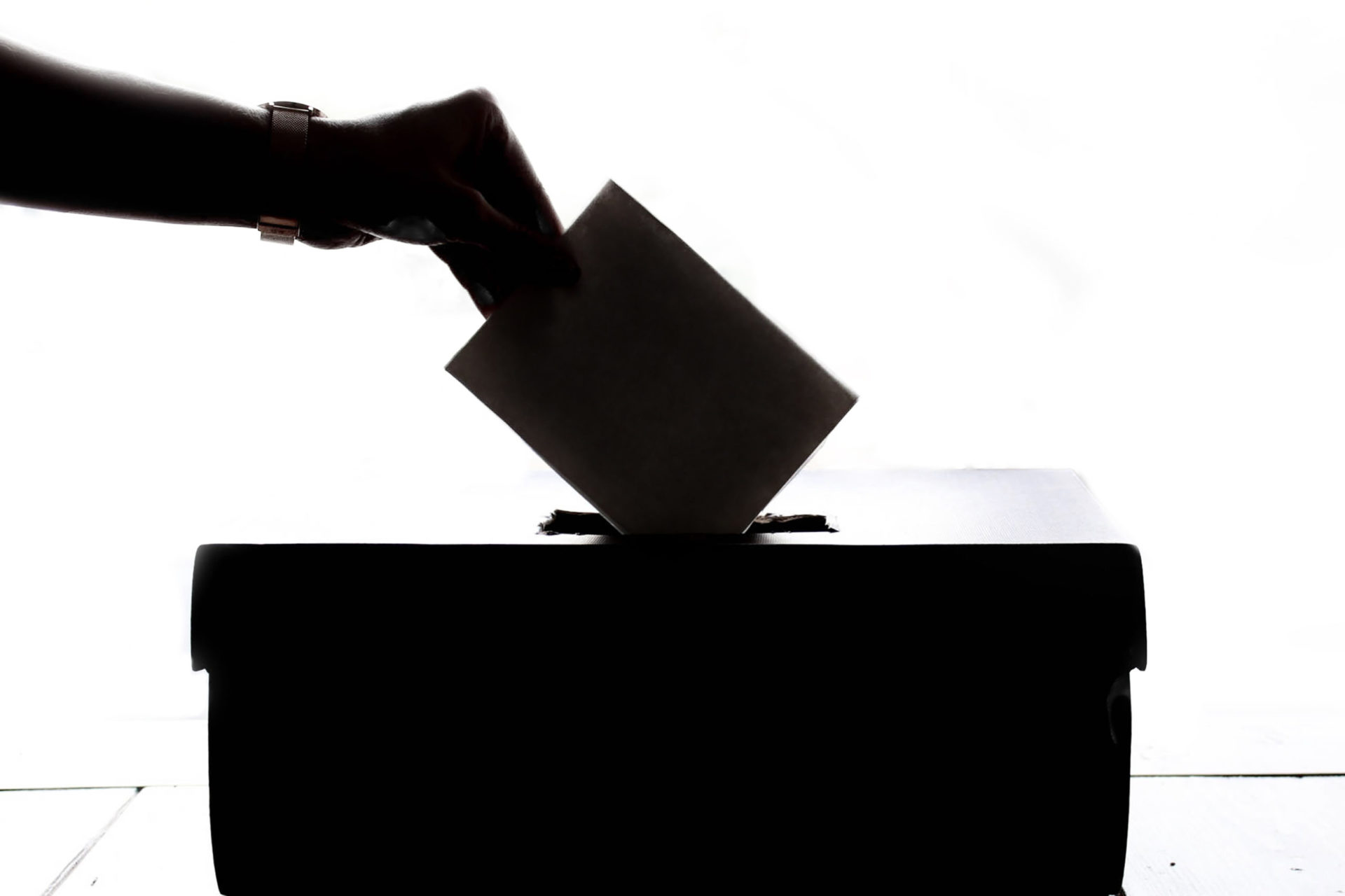 Elections foto